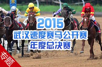2015武汉速度赛马公开赛年度总决赛