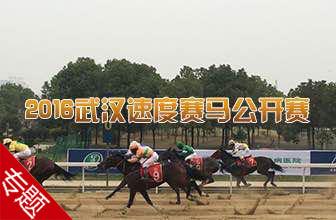 2016武汉速度赛马公开赛