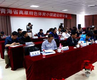 青海省高原特色體育小鎮建設研討會召開
